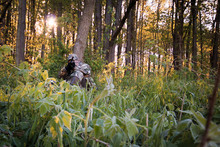 Turkey Hunting In Spring With ...