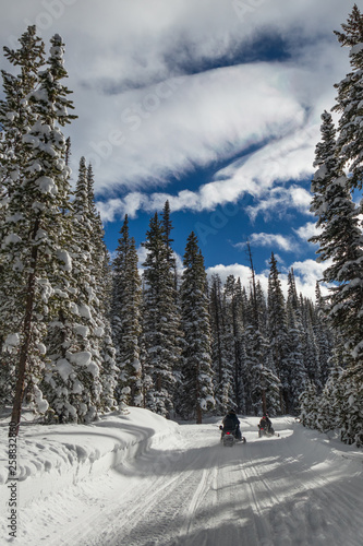 Snowmobiles driving on trail in Rocky Mountain National Park