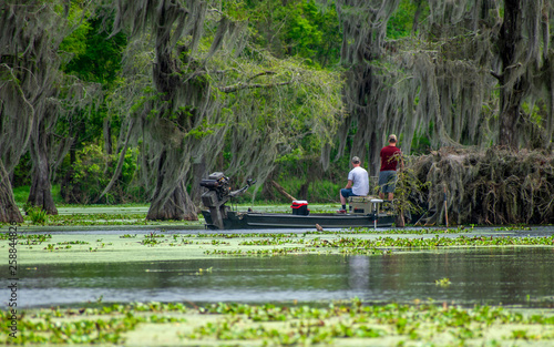Fototapeta  People are enjoying canoing, boating and fishing in swamp