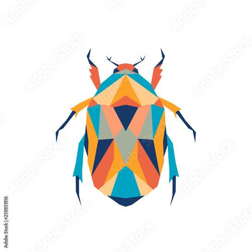 Canvas Print Geometric polygonal beetle