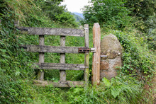 Grey And Brown Wood Gate To A Stone Fence Covered With Grass