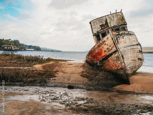 Canvas Prints Shipwreck Abandoned Ship in Point Reyes near San Francisco