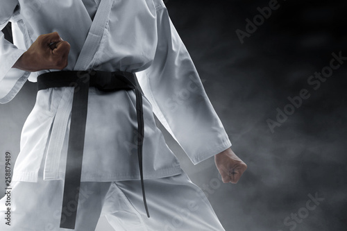 Photo  Martial arts fighter