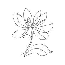 Magnolia Flower Line Icon