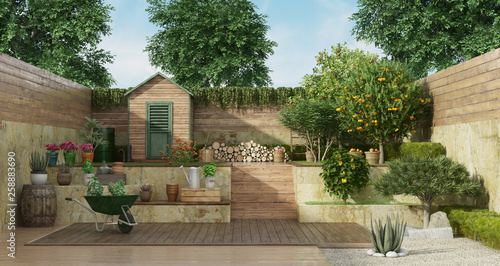 Cuadros en Lienzo Garden on two levels with wooden shed and fruit tree
