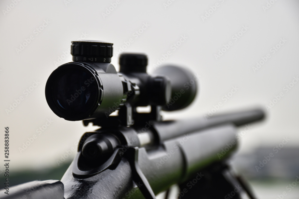 Fototapety, obrazy: Rifle with a scope and bipod