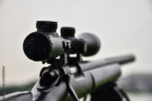 Fotomural Rifle with a scope and bipod