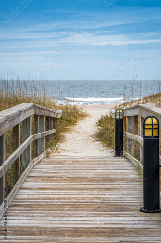 A very long boardwalk surrounded by shrubs in Amelia Island, Florida Canvas Print