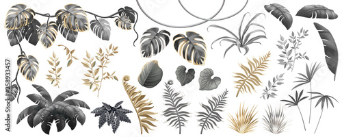 Set dark, gold and silver leaves of tropical exotic plants Fototapete