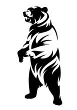 Rearing Up Brown Bear (ursus A...