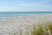 Tropical White Sand Beach On T...