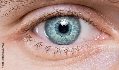 Poster Iris blue eye macro close-up