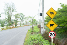 Horse Sign And Cow Sign.