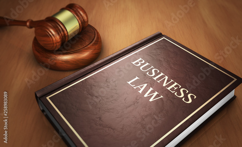 Business Law Book And Judge Gavel Canvas Print