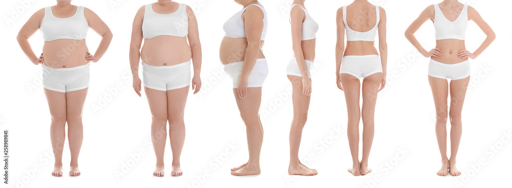 Fototapety, obrazy: Overweight woman on white background, closeup. Weight loss