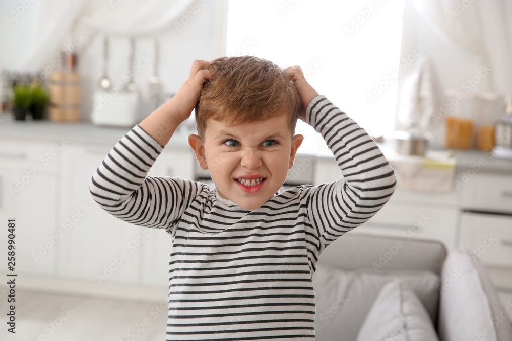 Fototapety, obrazy: Little boy scratching head at home. Annoying itch