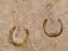 Horse Shoe Print On A Sand.