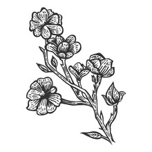 Magnolia Flower Sketch Engraving Vector Illustration. Scratch Board Style Imitation. Black And White Hand Drawn Image.