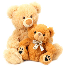 Two Toy Teddy Bears Isolated O...