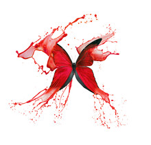 Red Butterfly In Paint Splash Isolated On A White Background