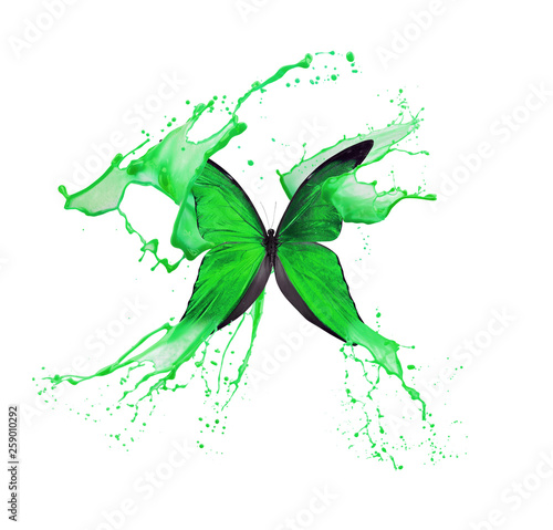 green butterfly in paint splash isolated on a white background Billede på lærred
