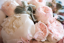Beautiful Pink And Crema Peony...