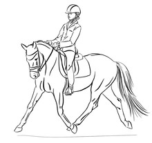 The Girl Riding On A Pony At Competitions