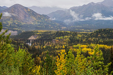 Train Tressel Surrounded With Colorful Leaves In Denali National Park.