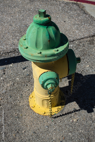 Poster Nautique motorise Yellow and green vintage fire hydrant.