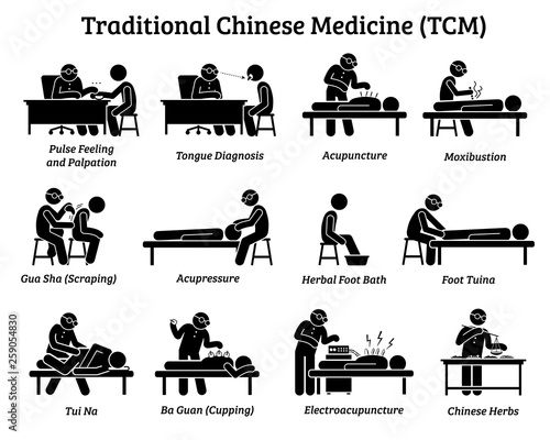 TCM Traditional Chinese Medicine icons and pictograms Wallpaper Mural