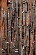 Staple And Wood Abstract