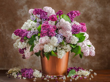 Still Life Lilac Flowers In A ...