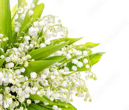 Wall Murals Bouquet of lily of the valley on white background