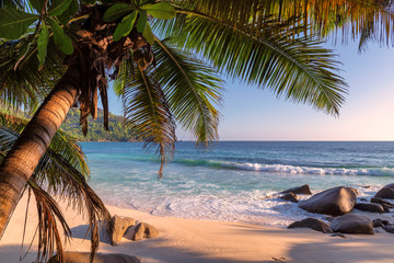 Fototapeta Optyczne powiększenie Exotic beach at sunset on tropical island.
