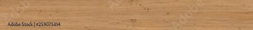 Fototapeta Larch texture for the site banner. obraz