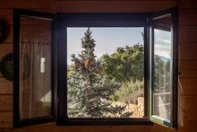 View Of The Mountains And The Forest Through The Window