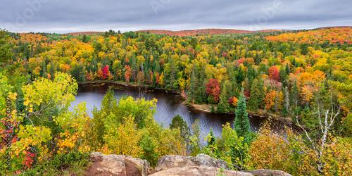 Panorama sur le parc Algonquin et ses couleurs d'automne - Ontario - Canada Wallpaper Mural