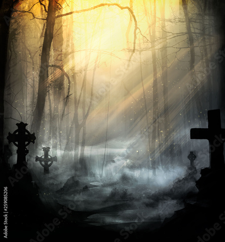 Photo  Cemetery in the fog lit by pleasant sunlight