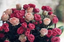 Small Roses Of Red And White Color, Bouquet
