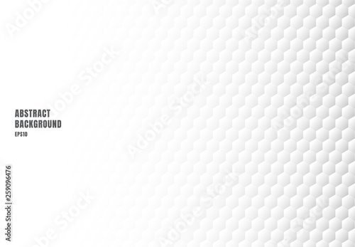 Fotografia, Obraz  Abstract white hexagon embossed pattern background and texture with copy space