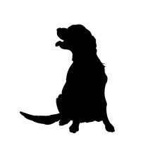 Black Silhouette Of Dog. Isola...