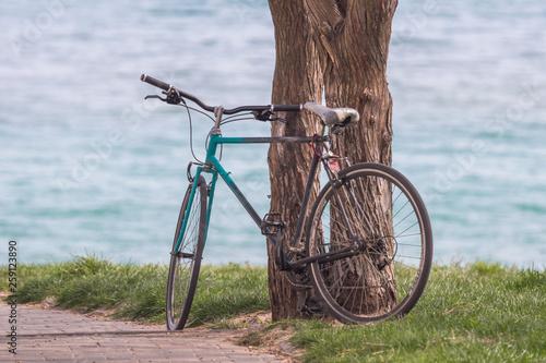 Fotografie, Obraz  A walk on the bike