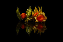 Several Physalis Fruits (cape Gooseberry) On A Black Background. The Physalis And Its Green Leaves Are Reflected In The Mysterious Light.