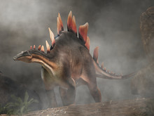 Stegosaurus, Was A Thyreophora...