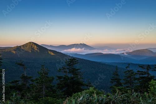 Photo sur Toile Jungle Summer of Akita Prefecture Hachimantai