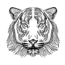 The Head Of A Tiger. Meditation, Coloring Of The Mandala. Head Of A Tiger With A Mustache And Stripes. Drawing Manually, Templates.