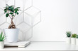 canvas print picture - White desk at an empty wall with a geometric pattern. Place for text. Copy space. Green succulents, bonsai, wooden stand. Minimalist composition