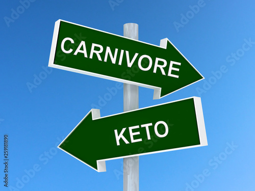 Valokuva Choice between Keto and Carnivore diet