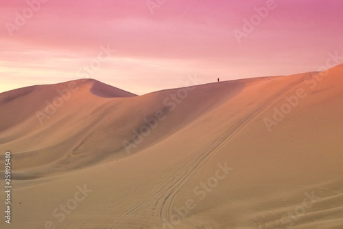 Wall Murals Candy pink sand dunes in the desert