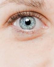 Detail Macro Shot Of Beautiful Eyes